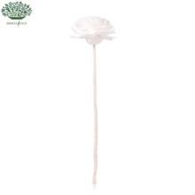 INNISFREE Reed Stick for Perfumed Diffuser [Flower] 1ea, INNISFREE